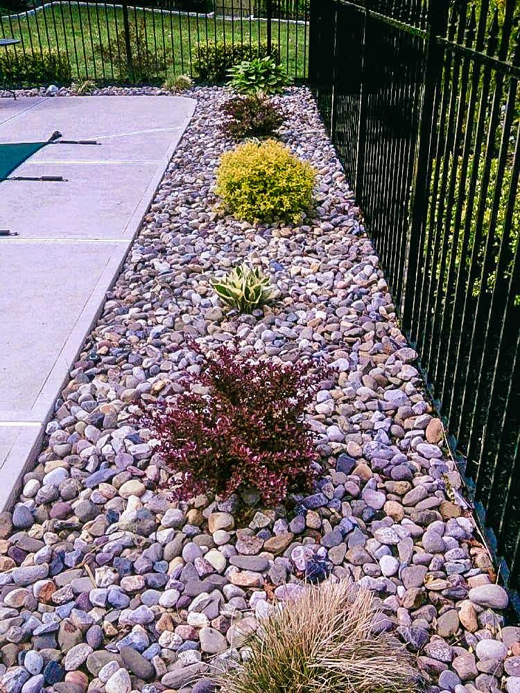 Contact Springer Lawn Care In Denton Tx Landscaping