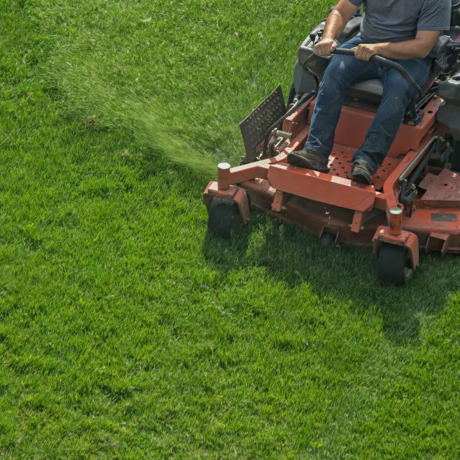 Best Lawn Service Denton Tx Springer Lawn Care