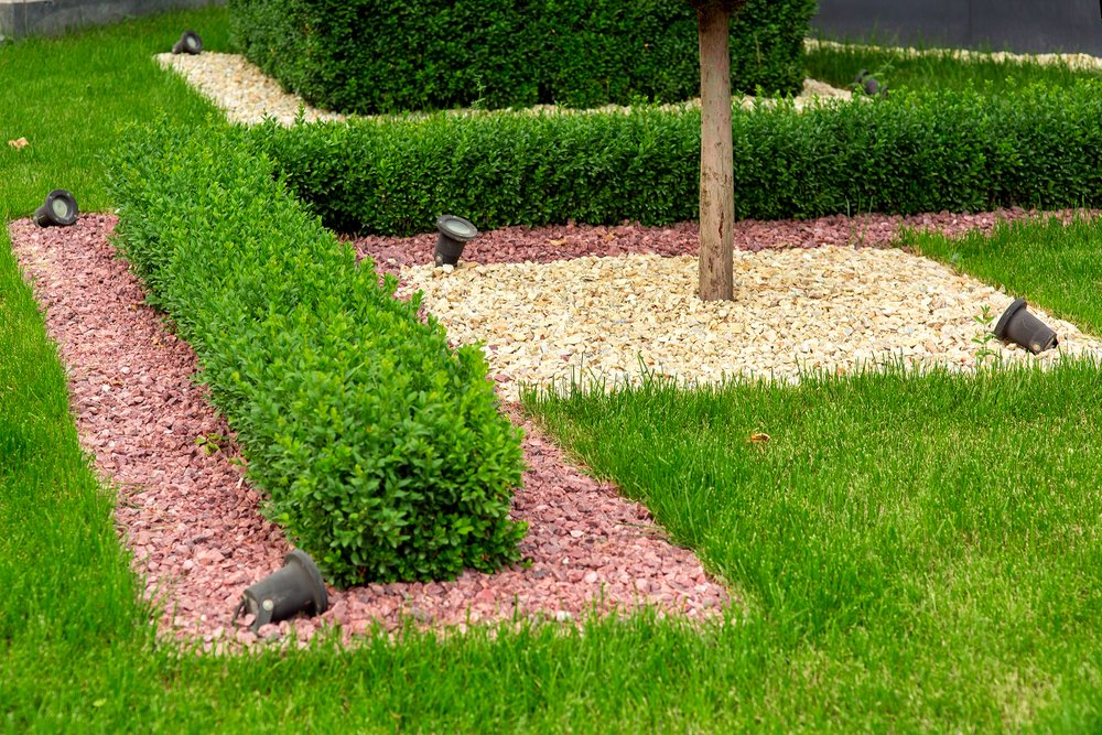 Tree landscaping and Mulching denton